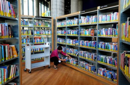 Public library loans display dramatic fall in closing  years