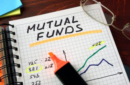 Should You Invest in Stocks or Mutual Funds?