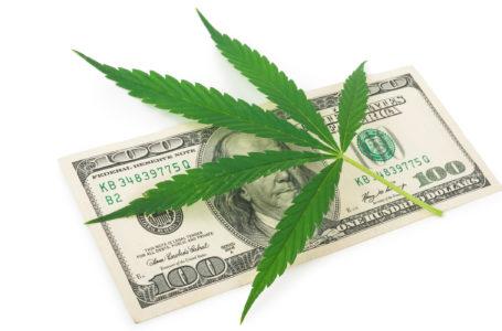 Who's Interested in Marijuana Stocks?