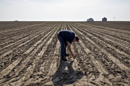 Falling agricultural earnings
