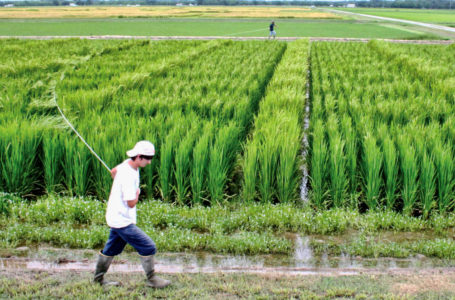 Farmers' earnings can be doubled